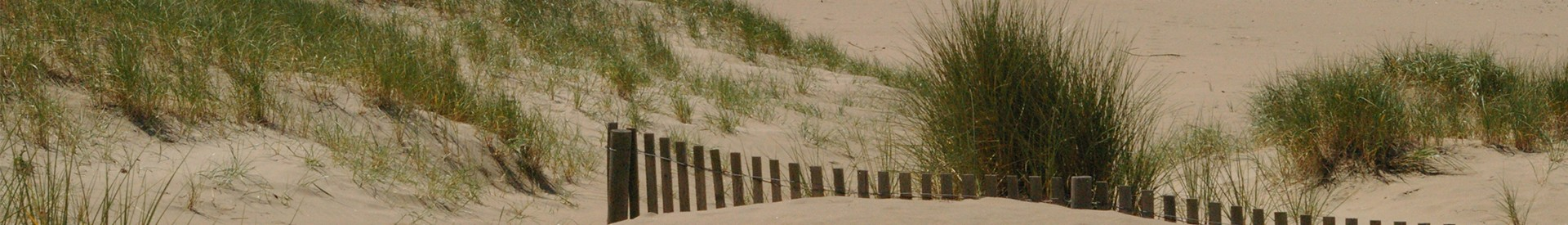 dune-222-transport-st-brevin