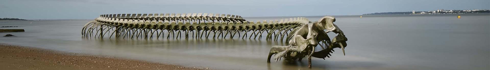 serpent-ocean-st-brevin-101-122