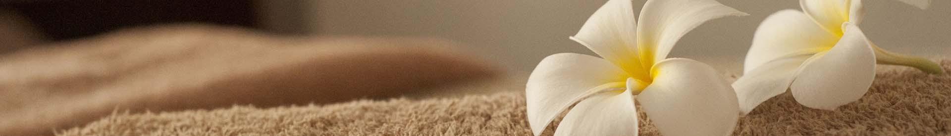 spa-remise-en-forme-bien-etre-massage-st-brevin-loire-atlantique-ccse-307