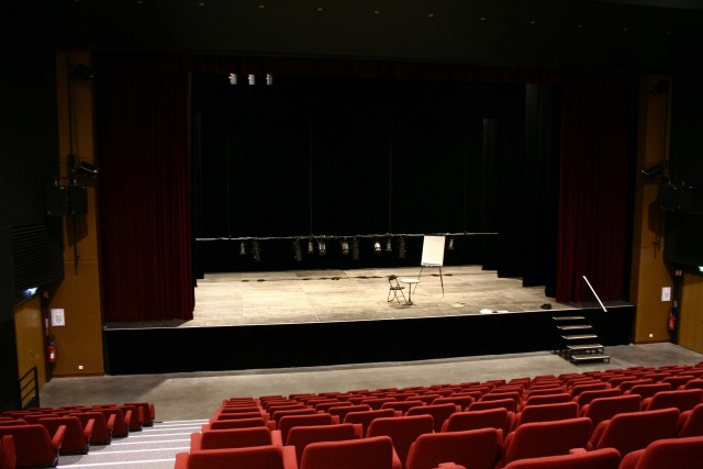 Theatres and shows rooms