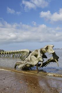 serpent-d-ocean-st-brevin-3-31