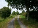 bord-de-loire-st-viaud-ccse-5404