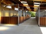 centre-equestre-cote-de-jade-st-pere-en-retz1-1389