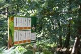 defi-nature-frossay-escal-arbre-paint-ball-jeux-enigmes-st-brevin-loire-atlantique-pays-de-retz-10-1719