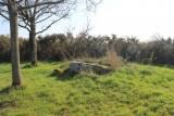 dolmen-de-la-briordais-2-2520