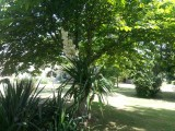 jardin-2-la-charlette-3406