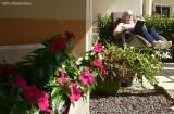 logement-avec-terrasse-privative-residence-senior-st-brevin-tourisme-3742