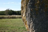 menhir-pierres-blanches-corsept-2