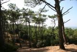 nature-et-environnement-brevinois-st-brevin4-1349