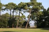 Parc-du-Pointeau-Saint-Brevin-3