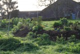 pre-de-la-pivre-escargot-fertile-5716