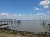 randonnees-st-brevin-sud-estuaire-ccse-loire-atlantique-estuaire-loire-2-1489
