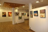 salle-exposition-st-brevin-les-roches-2