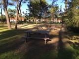 parc-des-sylphes-st-brevin-aire-de-jeux-pique-nique-Square-Maurice-Piconnier-st-brevin-2356