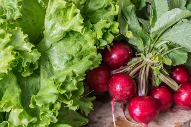garden-radish-2204088-1920-2140