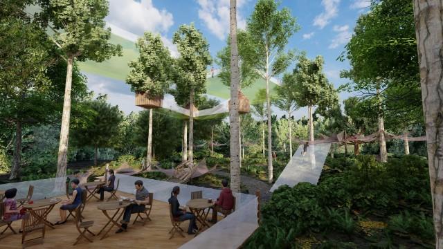 les-mysteres-de-la-foret-nouveaute-2021-terra-botanica-5-5520