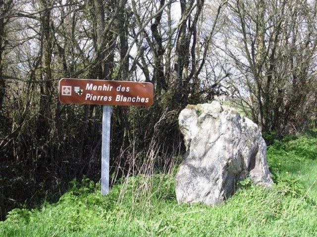 menhir-pierres-blanches-corsept-2534