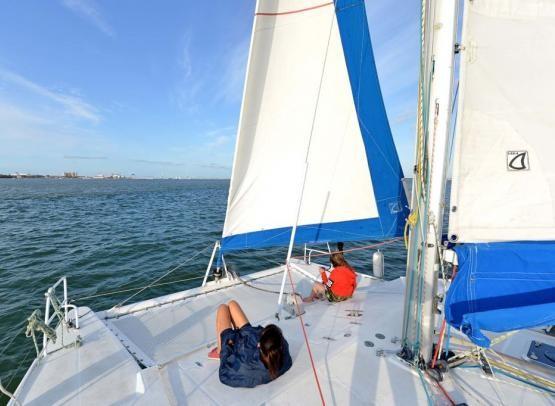 balades-en-mer-catamaran-mouette-and-sea-5272