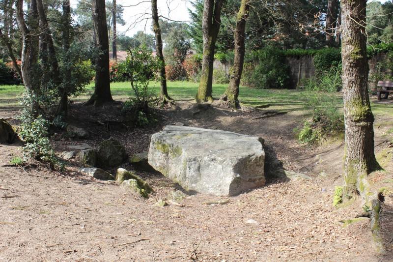 dolmen-rossignol-2-2523