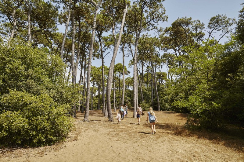Forêt-Pierre-Attelée-Saint-Brevin