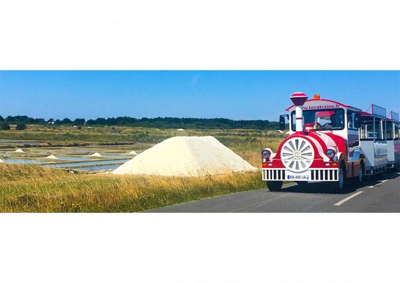 le-petit-train-des-marais-salants-guerande-6-2012