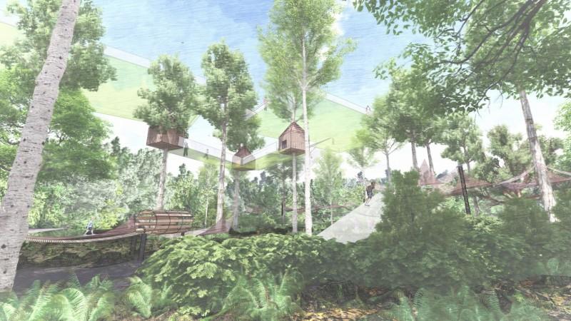 les-mysteres-de-la-foret-nouveaute-2021-terra-botanica-4-5519