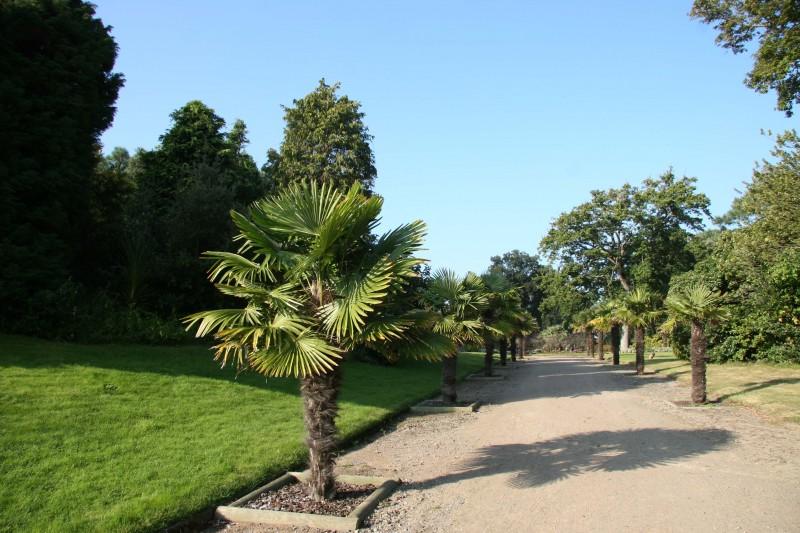 Parc-du-Pointeau-Saint-Brevin-1