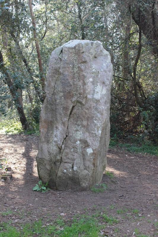 pierre-attelee-1-2525