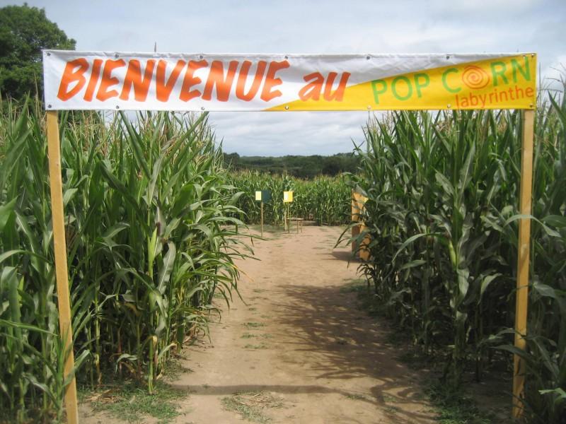 pop-corn-labyrinthe-2-1990