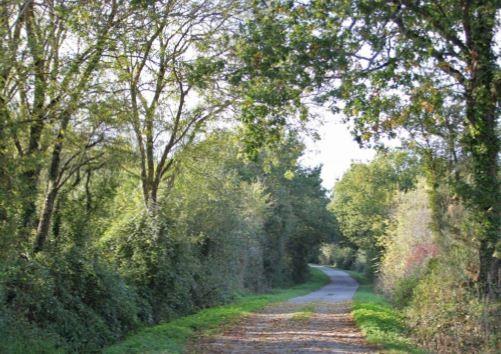 sentier-vert-st-brevin-tourisme1-3866