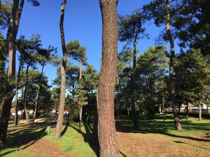 parc-des-sylphes-st-brevin-aire-de-jeux-pique-nique-Square-Maurice-Piconnier-st-brevin-1