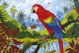 alain-thomas-paradis-couleurs-12517