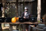 anims-halloween-13493