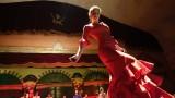 flamenco1-4012