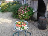 gite-des-templiers-saint-pere-en-retz-566