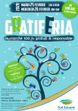 gratiferia-10098