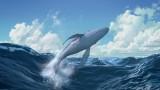 la-baleine-et-l-escargote-cinejade-4-12943