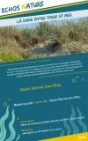 la-dune-entre-terre-et-mer-ot-3aout2021-1-12378