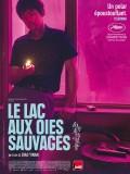 le-lac-aux-oies-sauvages-9450