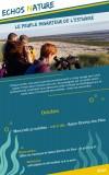 le-peuple-migrateur-de-l-estuaire-27octobre2021-13300