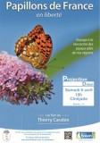 papillons-de-france-cinejade-st-brevin-tourisme-5910