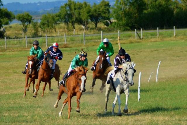 courses-hippiques-corsept-st-brevin-tourisme1-6991