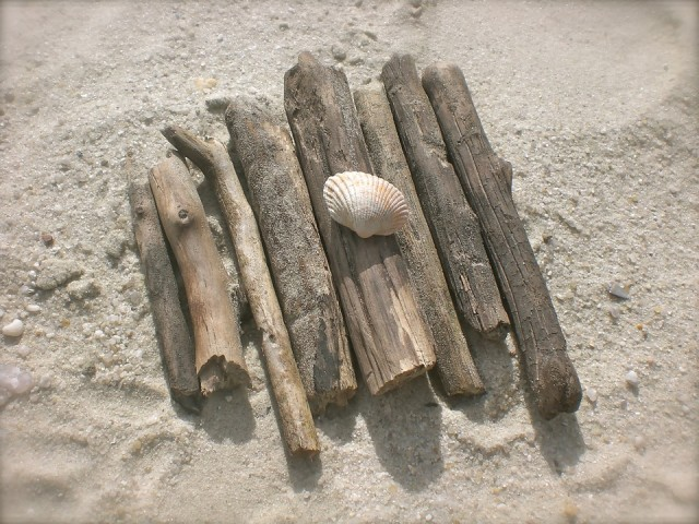 drift-wood-1048932-960-720-10027