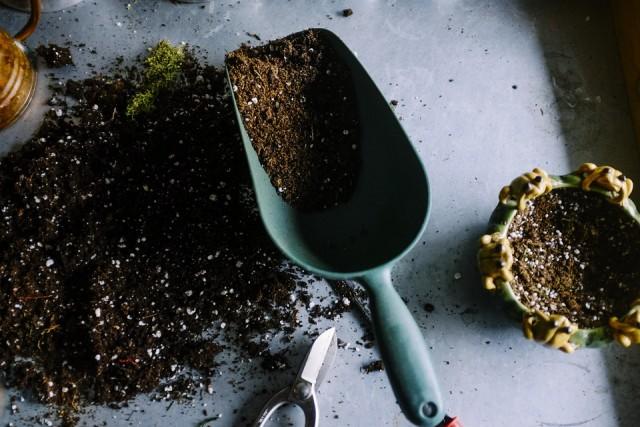 jardinage-8802