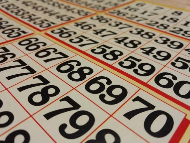 loto-bingo-801