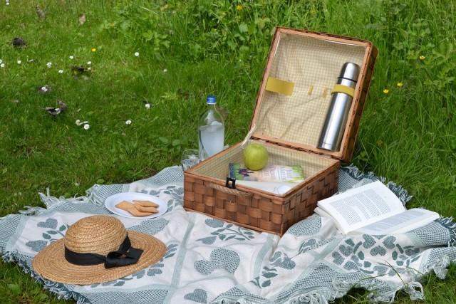 picnic1-3518
