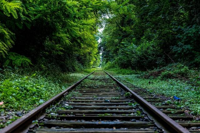 rails-13649