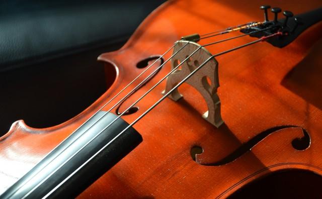 violoncelle-7548