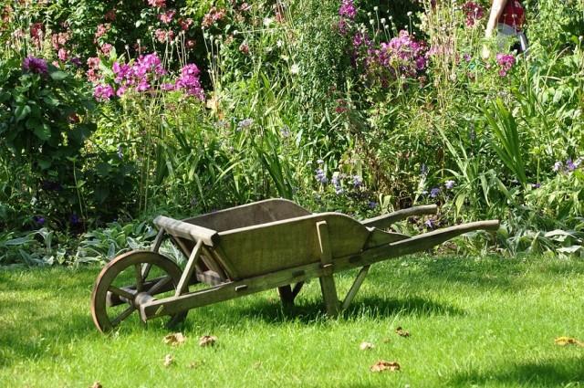 wheelbarrow-13524