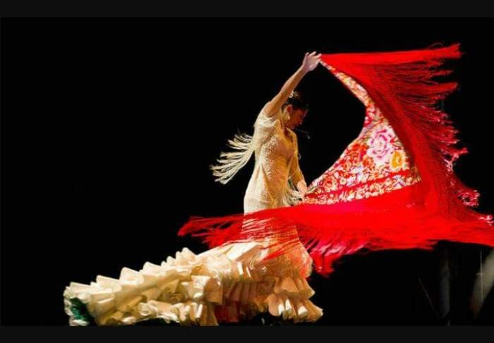 flamenco-4011